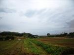 たぶ川集落の畑